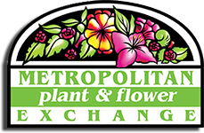 Metropolitan Plant & Flower Exchange Voucher Codes